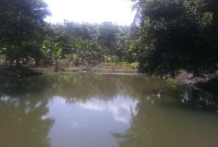 For Sale Land in Thong Pha Phum, Kanchanaburi, Thailand