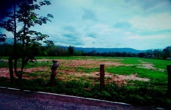 For Sale Land 15 rai in Mueang Phayao, Phayao, Thailand | Ref. TH-QMNYNIRI