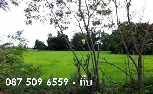 For Sale Land 5 rai in Sam Chuk, Suphan Buri, Thailand   Ref. TH-UJFZPPDU
