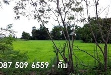 For Sale Land 5 rai in Sam Chuk, Suphan Buri, Thailand