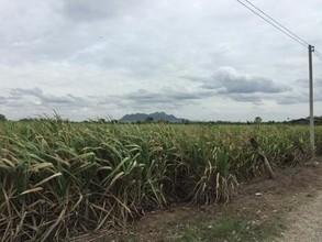 Located in the same area - Chai Badan, Lopburi