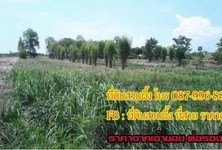 For Sale Land 3 rai in Suan Phueng, Ratchaburi, Thailand