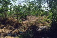 For Sale Land 16 rai in Khlong Luang, Pathum Thani, Thailand