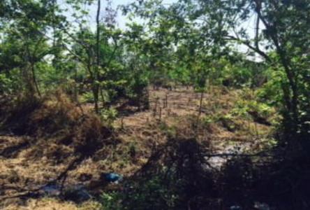ขาย ที่ดิน 16 ไร่ คลองหลวง ปทุมธานี