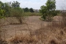 For Sale Land 399 sqwa in Phutthamonthon, Nakhon Pathom, Thailand