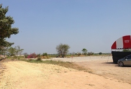 For Sale Land 216 sqwa in Sena, Phra Nakhon Si Ayutthaya, Thailand