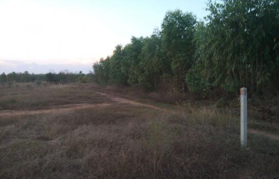 ขาย ที่ดิน 30 ไร่ จอมบึง ราชบุรี   Ref. TH-VHTVQDGL