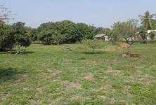 For Sale Land 413 sqwa in Mueang Chiang Mai, Chiang Mai, Thailand