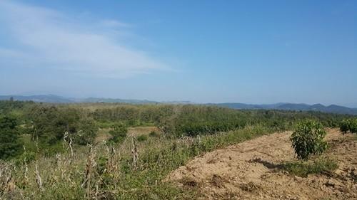 For Sale Land 6 rai in Phu Phiang, Nan, Thailand | Ref. TH-SCGUEGMH