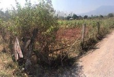 For Sale Land 2 rai in Phu Kradueng, Loei, Thailand