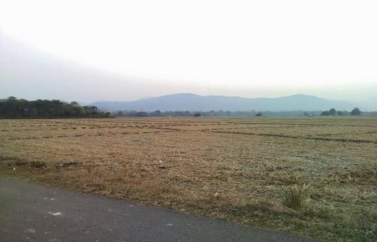 For Sale Land 211 rai in Mae Tha, Lamphun, Thailand | Ref. TH-GPHSIGXJ