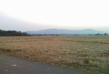 For Sale Land 211 rai in Mae Tha, Lamphun, Thailand