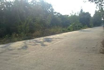 ขาย ที่ดิน 1 ไร่ หนองเสือ ปทุมธานี