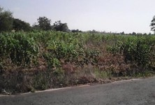 For Sale Land 60 rai in Thong Saen Khan, Uttaradit, Thailand