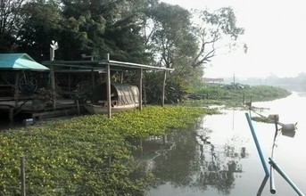 Located in the same area - Nakhon Chai Si, Nakhon Pathom
