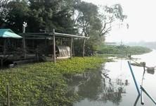 For Sale Land 3 rai in Nakhon Chai Si, Nakhon Pathom, Thailand