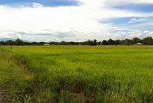 For Sale Land 15 rai in Doi Saket, Chiang Mai, Thailand