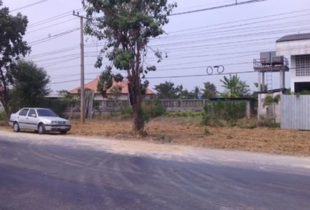 For Rent Land 200 sqwa in Lat Lum Kaeo, Pathum Thani, Thailand