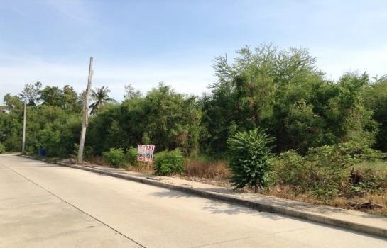 For Sale Land 60 sqwa in Sam Phran, Nakhon Pathom, Thailand | Ref. TH-WOBFQYIQ