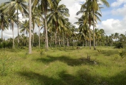 For Sale Land 9 rai in Mueang Prachuap Khiri Khan, Prachuap Khiri Khan, Thailand