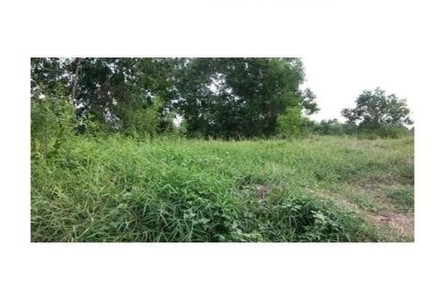 For Sale Land 7 rai in Khlong Luang, Pathum Thani, Thailand