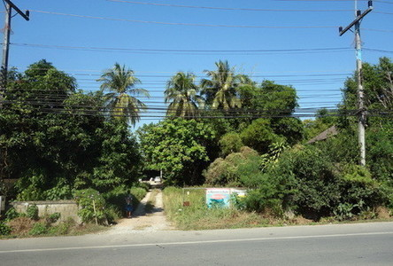 For Sale Land 10 rai in Mueang Chiang Rai, Chiang Rai, Thailand