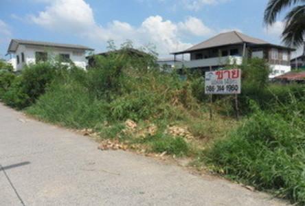 ขาย ที่ดิน 140 ตร.ว. ธัญบุรี ปทุมธานี
