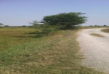 For Sale Land 18 rai in U Thong, Suphan Buri, Thailand