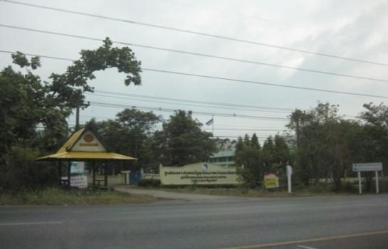 For Sale Land 199 sqwa in Mueang Udon Thani, Udon Thani, Thailand   Ref. TH-VAFUGGXT