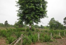 For Sale Land 199 sqwa in Mueang Udon Thani, Udon Thani, Thailand