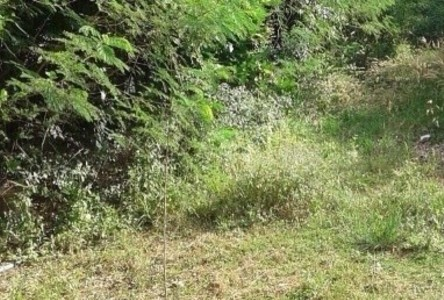 For Sale Land 8 rai in Sattahip, Chonburi, Thailand