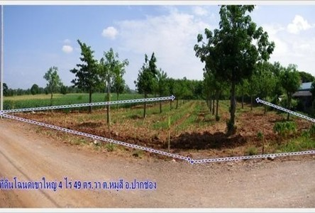 For Sale Land 4 rai in Pak Chong, Nakhon Ratchasima, Thailand