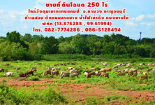 For Sale Land 243 rai in Tha Muang, Kanchanaburi, Thailand
