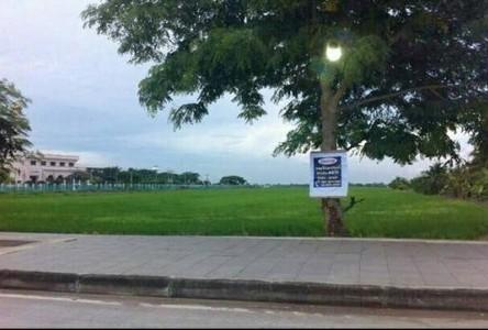 ขาย ที่ดิน 43 ไร่ หนองจอก กรุงเทพฯ