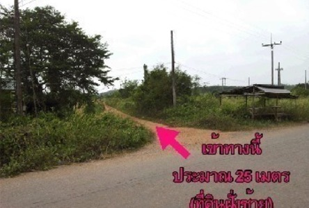 For Sale Land 100 sqwa in Khlong Hoi Khong, Songkhla, Thailand