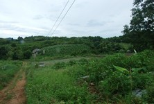 For Sale Land 20 rai in Pak Tho, Ratchaburi, Thailand