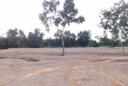 For Sale Land 200 sqwa in Sanam Chai Khet, Chachoengsao, Thailand