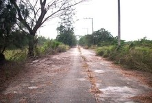For Sale Land 200 sqwa in Khlong Luang, Pathum Thani, Thailand