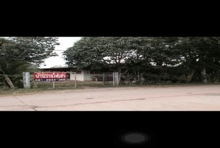 For Sale Land 12.5 rai in Klaeng, Rayong, Thailand