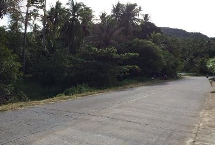 For Sale Land 4 rai in Ko Pha-ngan, Surat Thani, Thailand