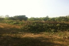 For Sale Land 49 rai in Kabin Buri, Prachin Buri, Thailand