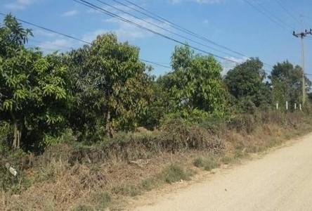 ขาย ที่ดิน 1 ไร่ สามโคก ปทุมธานี