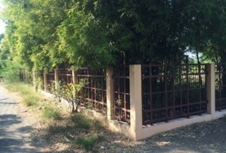 For Sale Land 167 sqwa in Mueang Lop Buri, Lopburi, Thailand