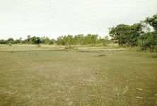 For Sale Land 8 rai in Kut Chum, Yasothon, Thailand