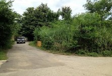 For Sale Land 135 sqwa in Mueang Chiang Mai, Chiang Mai, Thailand