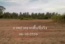 ขาย ที่ดิน 9 ไร่ ศรีราชา ชลบุรี