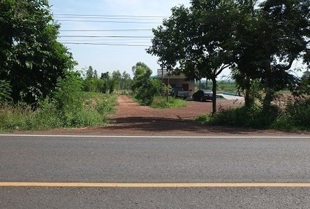 For Sale Land 84 rai in Nong Saeng, Udon Thani, Thailand