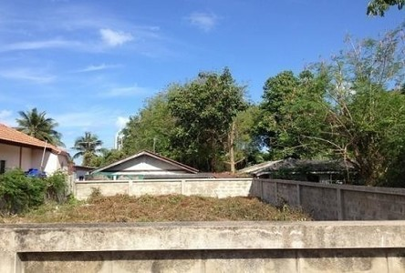 For Sale Land 47 sqwa in Bang Lamung, Chonburi, Thailand