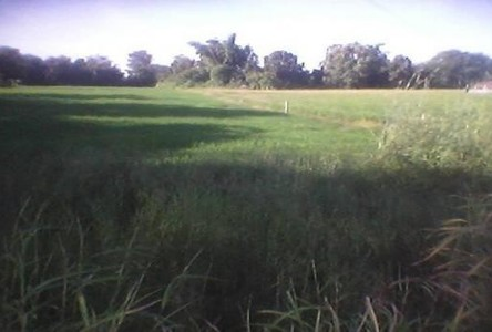 For Sale Land 4 rai in Nong Khae, Saraburi, Thailand