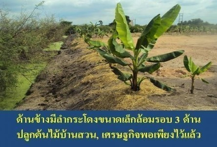 For Sale Land 614 sqwa in Mueang Chachoengsao, Chachoengsao, Thailand